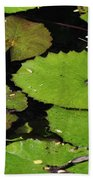 Lily Pads And Lotus Flower Bath Towel