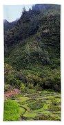Limahuli Taro Fields In Kauai Bath Towel