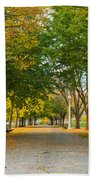 Lincoln Park In Fall Bath Towel