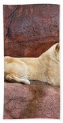 Lioness On A Red Rock Bath Towel