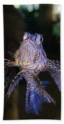 Lionfish Hand Towel