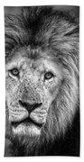 Lion's Eyes Bath Towel