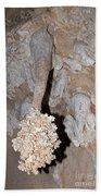 Lions Tail Carlsbad Caverns National Park Bath Towel