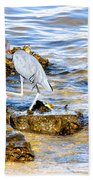 Little Blue Heron Bath Towel