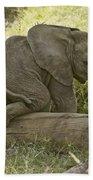 Little Elephant Big Log Bath Towel