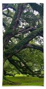 Live Oak Trees Bath Towel