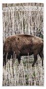 Lone Buffalo Hand Towel