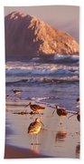 Long Billed Curlew - Morro Rock Bath Towel
