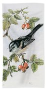 Long Tailed Tit And Rosehips Bath Towel