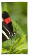 Longwing On A Leaf Hand Towel