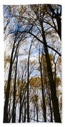 Looking Skyward Into Autumn Trees Bath Towel
