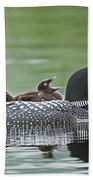 Loon Chick - Big Yawn Bath Towel