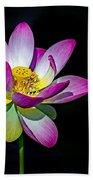 Lotus Blossom Hand Towel