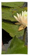 Lotus Flower In White Bath Towel