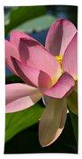 Lotus - Flowers Bath Towel
