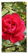 Lovely Red Rose Bath Towel