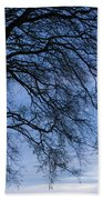 Low Angle View Of Tree At Dawn, Dark Bath Towel