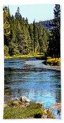 Lower Truckee River Bath Towel