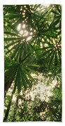 Lowland Tropical Rainforest Fan Palms Bath Towel