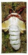 Luna Moth Actias Luna Bath Towel