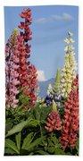 Lupinus Flowers Hokkaido Japan Bath Towel