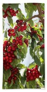 Luscious Cherries Bath Towel
