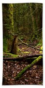 Lush Green Forest Hand Towel
