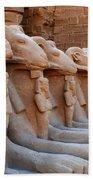 Luxor Temple 3 Bath Towel