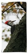 Lyndonville Pileated Woodpecker Bath Towel