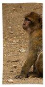 Macaque Monkeys Bath Towel