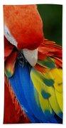 Macaws Of Color25 Bath Towel