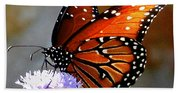 Macro Butterfly Bath Towel