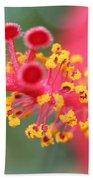 Macro Close Up Of Hibiscus Pollen  Bath Towel
