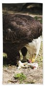 Magnificent Bald Eagle Breakfast Bath Towel