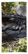 Magnificent Frigatebird Galapagos Bath Towel