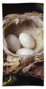 Magnificent Hummingbird Eggs Bath Towel