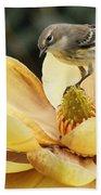 Magnolia And Warbler Photo Bath Towel