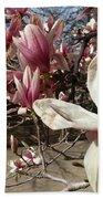 Magnolia Branches Bath Towel