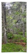 Maine Forest Bath Towel