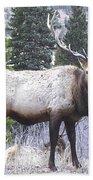 Majestic Elk Bath Towel