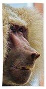 Male Baboon Bath Towel