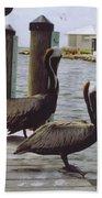 Male Pelicans Bath Towel