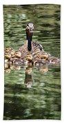 Mallard Hen With Ducklings And Reflection Bath Towel