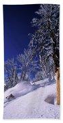 Man Skiing Through Trees In Fresh Hand Towel