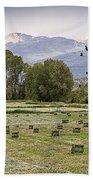 Mancos Colorado Landscape Bath Towel