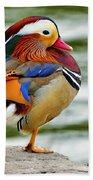 Mandarin Duck Posing Bath Towel