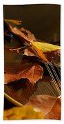 Mandolin Autumn 3 Bath Towel