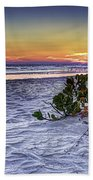 Mangrove On The Beach Hand Towel
