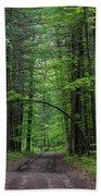 Manistee National Forest Michigan Bath Towel