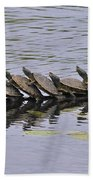 Map Turtles Bath Towel